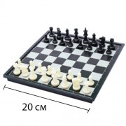 Шахматы Магнитные Чёрные и Белые